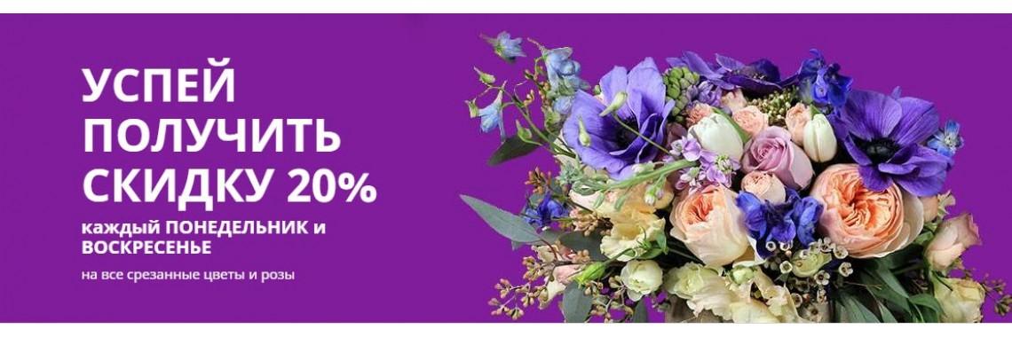 Скидка 20% на срезанные цветы каждый понедельник и воскресенье